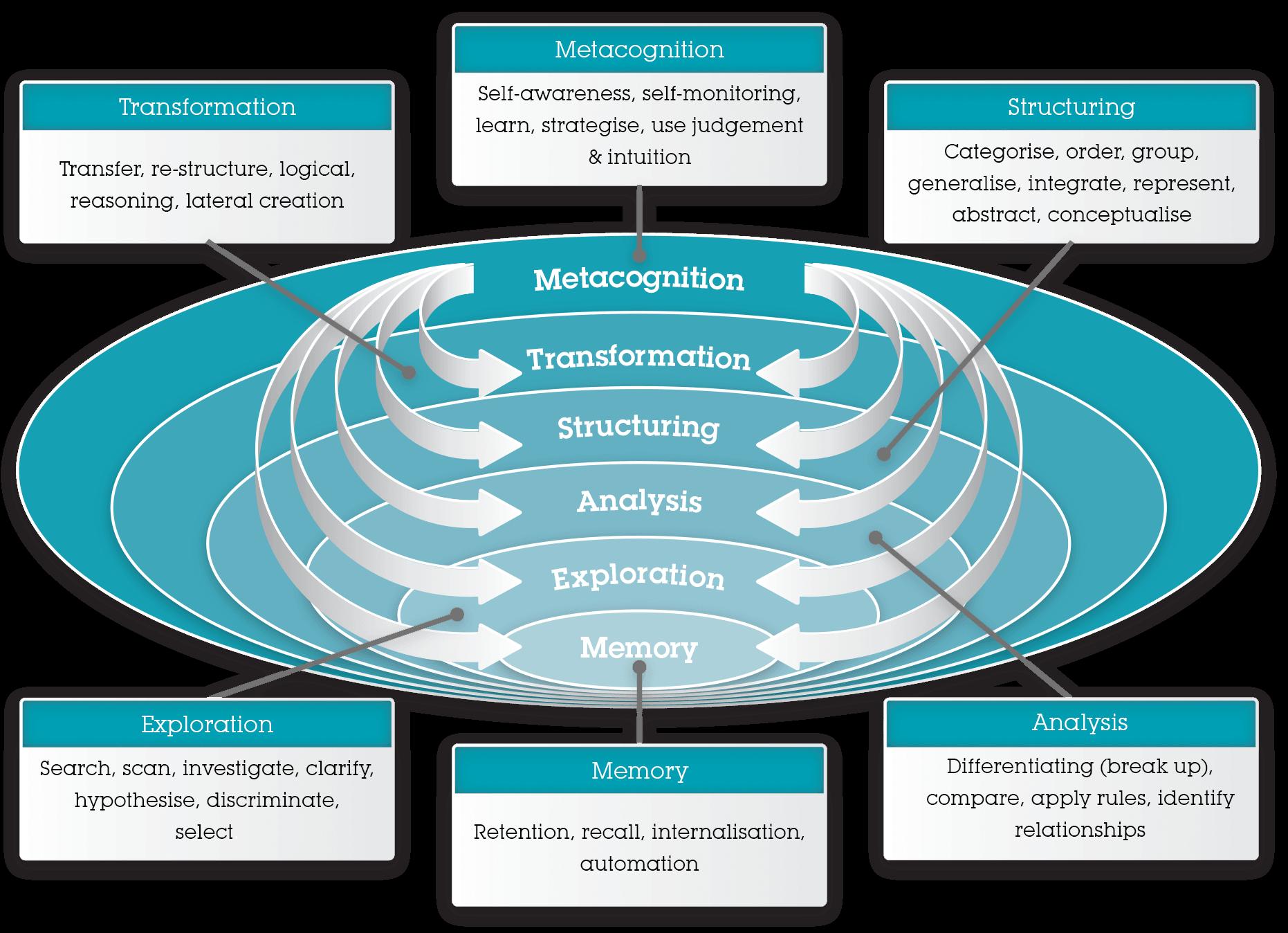 Metacognitive Criteria Illustration